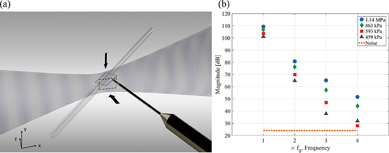 Fig. 1. (a) Schematic representation of the experimental configuration, depicting exposure of the capillary, orientated in the horizontal plane at 45° to the focused ultrasound, and the needle hydrophone in the emission collection position. Focused ultrasound propagates from left to right, and microbubble flow was from back right to front left, for this representation. The imaging axis and fields of view for the high-speed imaging are also represented (top view dotted, side view dashed). (b) Assessment of focused ultrasound propagation non-linearity, up to 4f0 for the peak-negative pressure amplitudes reported in the Results.