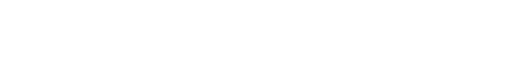 i-SPEED 210/211 logo.